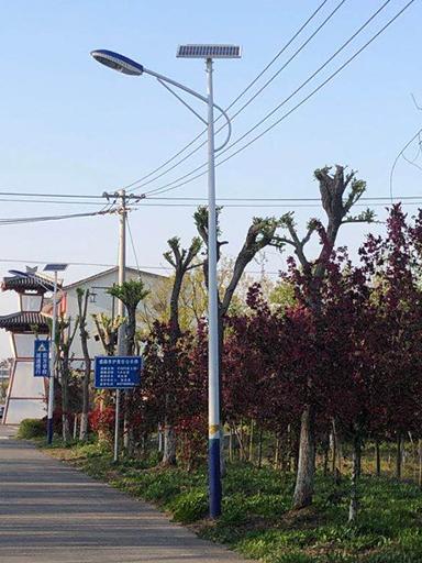福建省三明市明溪镇:农村太阳能路灯点亮幸福生活