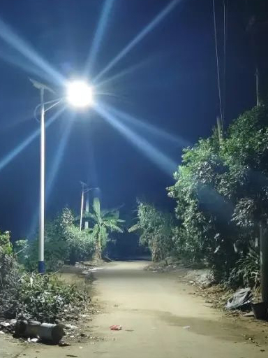 发家致富道上不抹黑,雁江这一村装上太阳能路灯