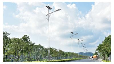 乡村led太阳能路灯生产商价格多少?