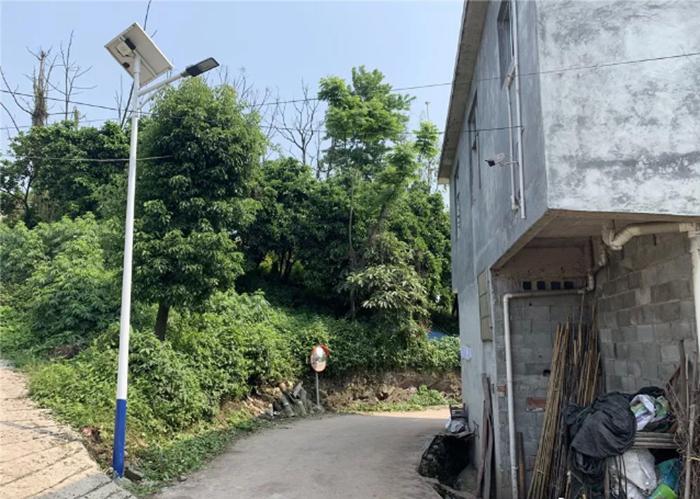6米太阳能路灯效果图