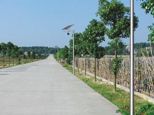 新农村工程案例