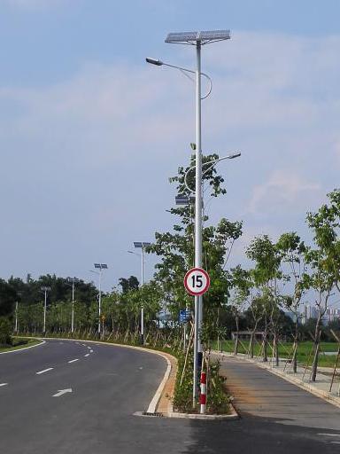 广西玉林太阳能路灯工程案例