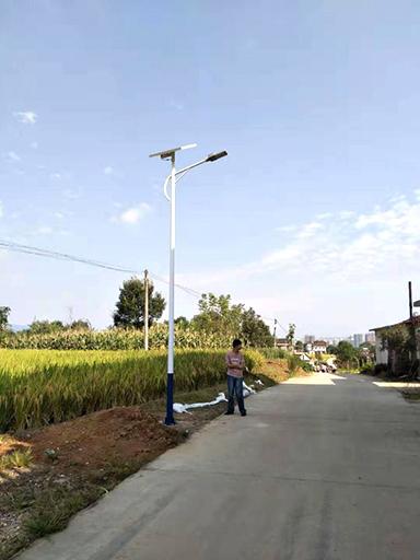 陕西汉中南郑区大河坎镇卢家沟村十组太阳能路灯工程案例